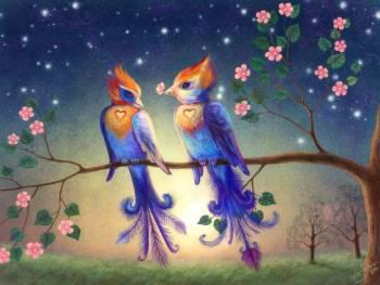 Liolio_Birds_by_luana.jpg