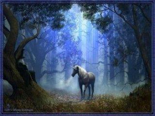 caballo.jpg